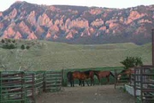 Pink mountain corral