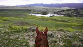 good-rates-guest-cattle-ranch-wyoming