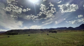best-dude-cattle-ranch-wy